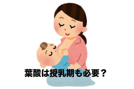 授乳期の葉酸