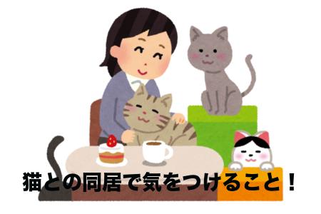 赤ちゃん 猫 同居