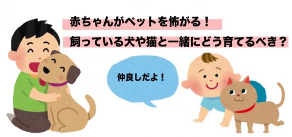 赤ちゃんペットと同居